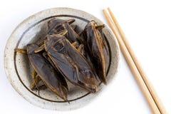 Het reuzewaterinsect is eetbaar insect voor het eten aangezien de voedselinsecten knapperige snack op plaat en eetstokjes op witt stock afbeelding