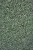 Het ribfluweel polipropylen groen achtergrond herhaald blad hoogwaardig staal, royalty-vrije stock foto