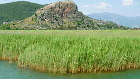 het riet van de rondvaartrivier, historische dalyan, ortaca, koycegiz, Turkije stock video