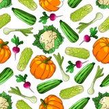 Het rijpe naadloze patroon van landbouwbedrijfgroenten Stock Foto