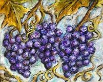 Het rijpe Rode Druivenillustratie Schilderen Royalty-vrije Stock Afbeelding