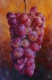 Het rijpe roze druiven schilderen Royalty-vrije Stock Afbeelding
