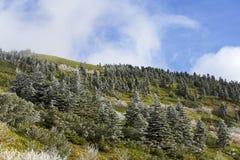 Het rijplandschap van de bergketen Stock Afbeeldingen