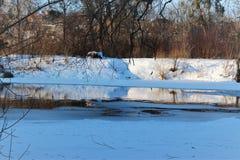Het rivierhoen in de winter in de stad van Zhitomir, de Oekraïne Royalty-vrije Stock Foto's