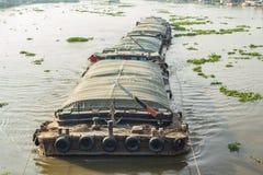 Het rivierleven Royalty-vrije Stock Fotografie