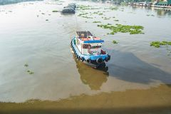 Het rivierleven Royalty-vrije Stock Foto