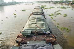Het rivierleven Stock Foto's