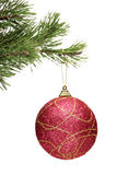 Het rode bal hangen op een tak van de Kerstmisboom Stock Afbeelding