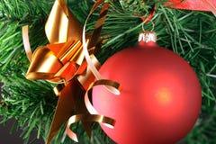Het rode bal hangen van Kerstmisboom Stock Fotografie