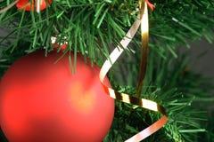 Het rode bal hangen van Kerstmisboom Stock Foto