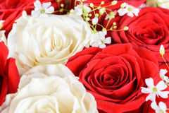 Het rode en witte boeket van het rozenhuwelijk Stock Foto's