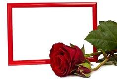 Het rode frame en nam toe Royalty-vrije Stock Afbeeldingen