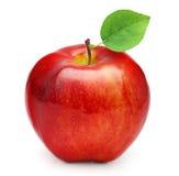 Het rode Fruit van de Appel met Blad Stock Foto
