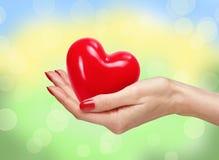 Het rode hart bij de mens overhandigt heldere aard Stock Fotografie