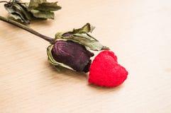 Het rode hart met droog nam toe Stock Foto