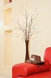 Het rode hoofdeinde, de hoed en de vaas van de leerbank Stock Foto's