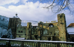 Het Rode Kasteel van Heidelberg Stock Afbeelding