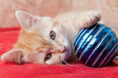 Het rode katje legt op een rood met een stuk speelgoed van Kerstmis Royalty-vrije Stock Fotografie