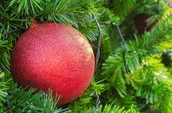 Het rode Kerstmisbal hangen op boom Sluit omhoog Royalty-vrije Stock Foto's