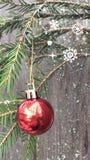 Het rode Kerstmisbal hangen op een nette tak stock fotografie
