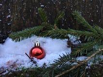 Het rode Kerstmisbal hangen op een nette tak stock afbeeldingen