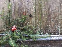 Het rode Kerstmisbal hangen op een nette tak royalty-vrije stock afbeelding