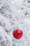 Het rode Kerstmisbal hangen op een sneeuwtak in de winter bos Vrolijke Kerstmis en het Gelukkige Nieuwjaar Royalty-vrije Stock Foto's