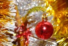 Het rode Kerstmisbal hangen op pijnboomtakje Stock Fotografie