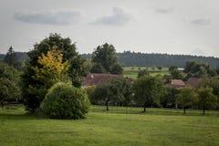 Het rode kleine dorp van het dakenhuis onder bomen Royalty-vrije Stock Foto's