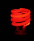 Het rode Licht van de Spaarder van het Geld Stock Afbeeldingen
