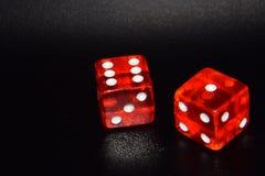 Het rode lichtende casino dobbelt op zwarte nadenkende achtergrond Stock Foto