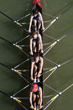Het roeien Stock Foto