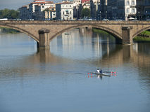 Het roeien op de rivier Arno stock foto's