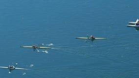 Het roeien ras tussen drie deelnemers, professionele watersporten, langzame motie stock video
