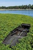 Het roeien van boot de Loire Stock Foto's