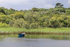 Het roeien van boot op stil meer Stock Afbeeldingen