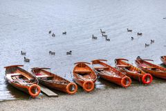 Het roeien van boten voor huur stock afbeeldingen