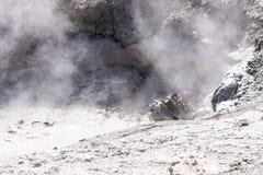 Het roeren van modderkuil in het Nationale Park van Yellowstone stock afbeeldingen