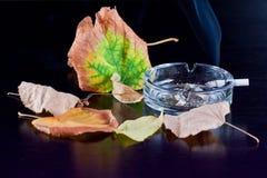 Het roken is slecht concept met droge de herfstbladeren. Stock Afbeeldingen