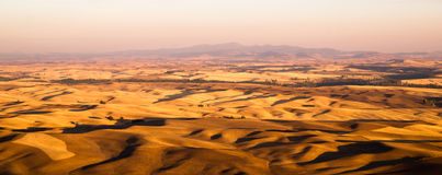 Het Rolling Gebied Oostelijke Washingto van Palouse van de Heuvels Landbouwgrond royalty-vrije stock foto's