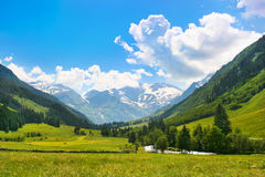 Het romantische landschap van de de zomeraard Royalty-vrije Stock Foto's