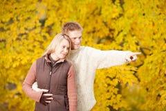 Het romantische paar dat van de herfst samen in park glimlacht Stock Fotografie