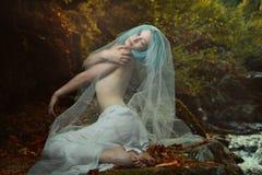 Het romantische vrouw stellen in het bos van de herfstkleuren stock afbeelding