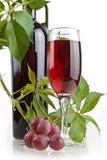 Het romantische wijn nog-leven Stock Foto's