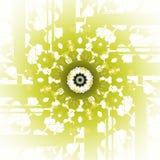 Het ronde groene lichtgroene wit van de ornamentolijf centreerde vaag Stock Foto