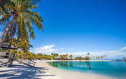 Het Ronde Strand in Matheson Hammock County Park Miami royalty-vrije stock foto