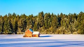 Het rood dilapidated en verliet huis op een breed sneeuw behandeld gebied in Glen Valley in Fraser Valley van Brits Colombia stock afbeelding