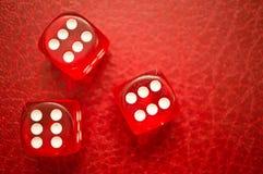 Het rood dobbelt het tonen van nummer 6 Royalty-vrije Stock Foto's
