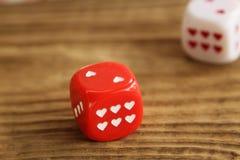 Het rood en het wit dobbelen/kuberen met harten op houten achtergrond Stock Afbeeldingen