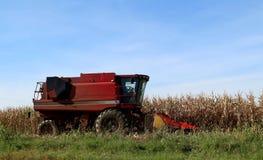 Het rood maaidorserbegin om in cornfield in een zonnige de herfstdag te werken royalty-vrije stock fotografie